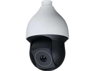 ICRealtime ICIP-TP4824 Indoor/Outdoor Network Dome Pan/Tilt Camera/19mm Lens/PoE